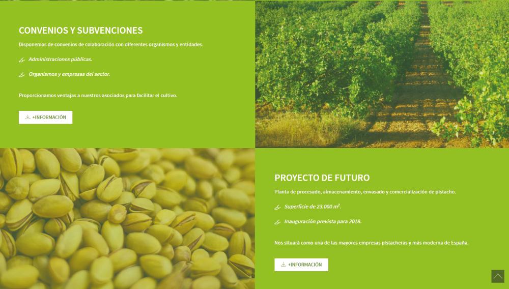 APPISTACO | Producción y comercialización de pistacho