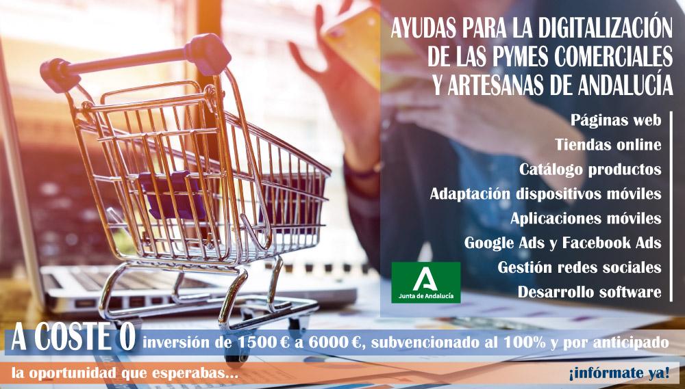 ¡Subvención del 100% de la inversión por adelantado para desarrollar tiendas online!