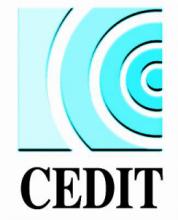 CEDIT | Centro Diffusione Imprenditoriale della Toscana S.cons.r.l (Italia)